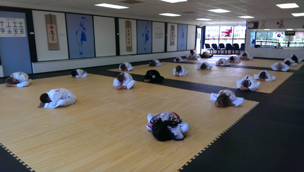 Sung Chos Tae Kwon Do - After School Program